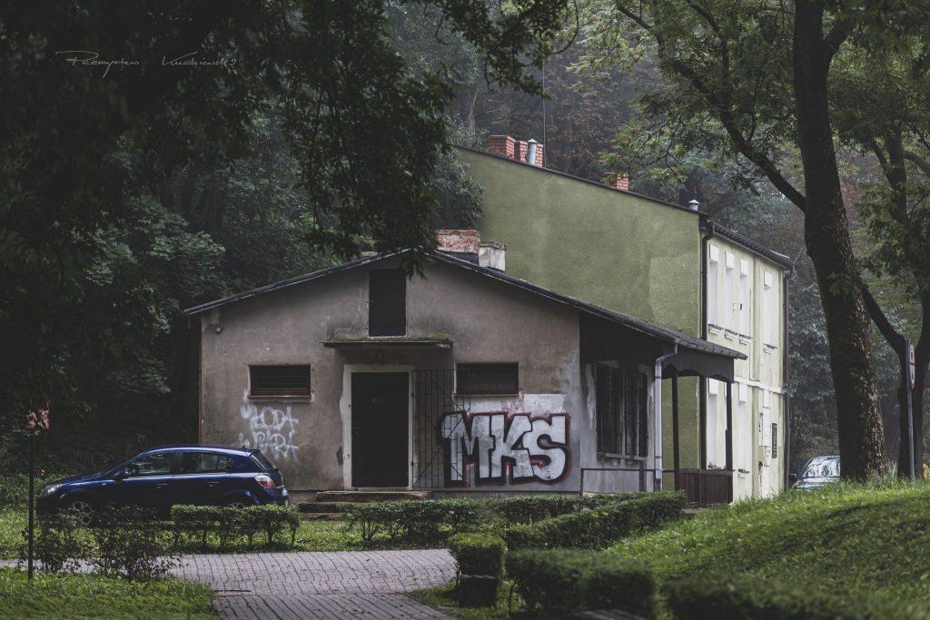 Park Jaroslawa Dabrowskiego poranek fotograf Ciechanow ciechanowiak Przemyslaw Kuzniewski