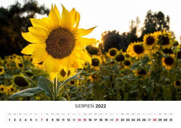 08_sierpien_kalendarz_2022_Ciechanow_ciechanowiak_Przemyslaw_Kuzniewski